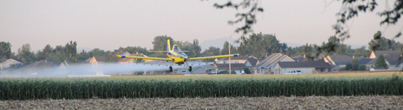 Crop Duster just outside Brighton, CO